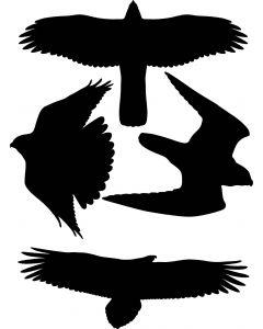Skræmmefugle A4 ark