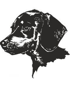 Labradorhoved