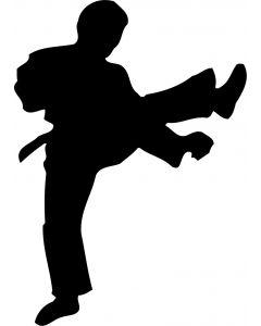 Karate-udøver