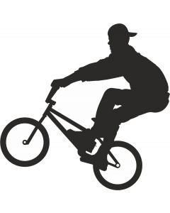 Cykelsport 1