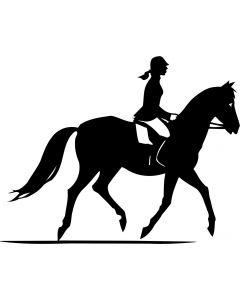 Hest med rytter 2