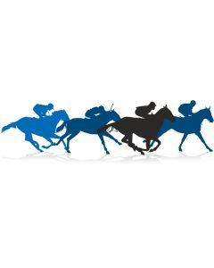 Hest, 5 X15 cm.