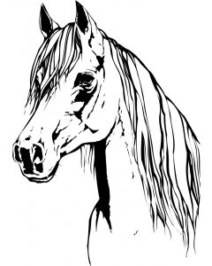 Hest, 8 x 10 cm.