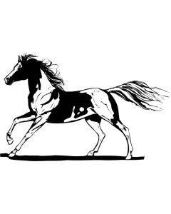 Hest, 9,5 x 15 cm