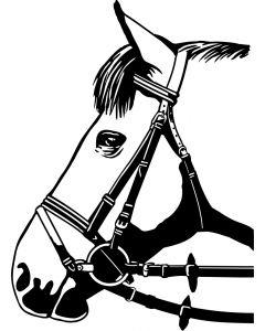 Hest, 7 x 10 cm.