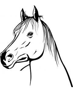 Hest, 15 x 16,5 cm