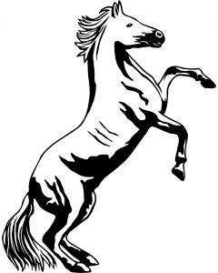 Hest, 12 x 15 cm.