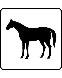 Hest, 13 x 13 cm.