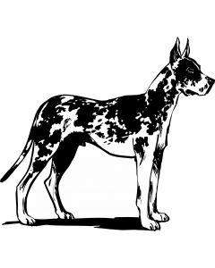 Stående hund i profil