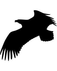 Skræmmefugl, str. 20 x 18 cm