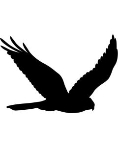 Skræmmefugl, str 20 x 13 cm