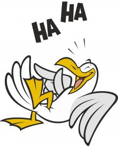 Måge-latter