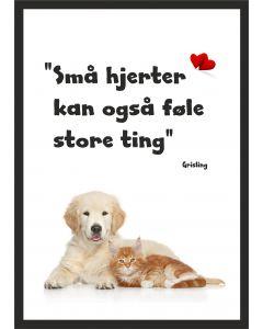 Killing og hundehvalp med Grisling citat