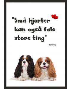 Hundehvalpe med Grisling citat