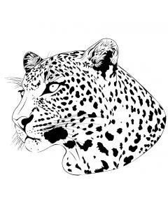 Leopard Sort/hvid 1806