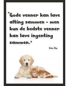 Killing og hundehvalp med Peter Plys citat
