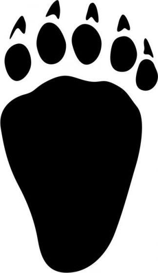 Bjørne-pote, højre